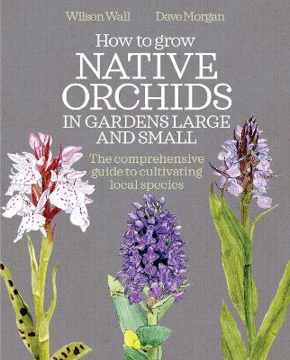 How to Grow Native Orchids in Gardens Large and Small: The Comprehensive Guide to Cultivating Local Species