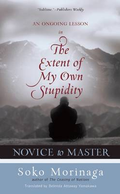 Novice to Master: An Ongoing Lesson in the Extent of My Own Stupidity