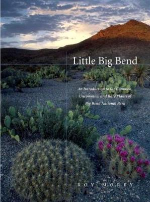 Little Big Bend: Common, Uncommon, and Rare Plants of Big Bend National Park