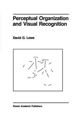 Perceptual Organization and Visual Recognition