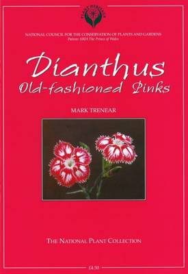 Dianthus: Old-fashioned Pinks