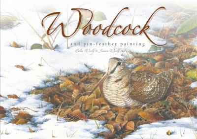 Woodcock and Pin-Feather Painting