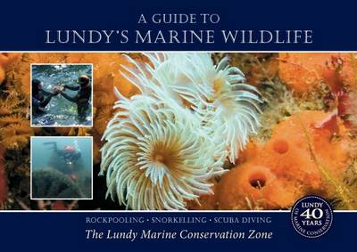 A Guide to Lundy's Marine Wildlife: Rockpooling - Snorkelling - Scuba Diving. The Lundy Marine Conservation Zone