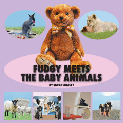 Fudgy Meets the Baby Animals