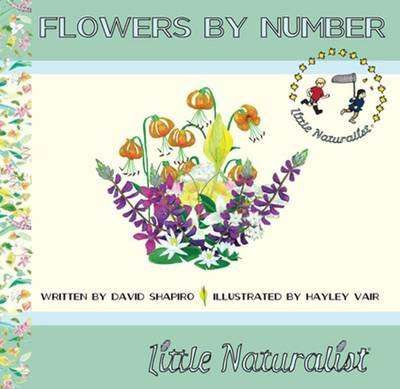 Flowers by Number
