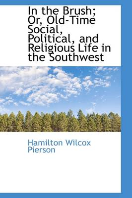 In the Brush: Old-Time Social, Political, and Religious Life in the Southwest