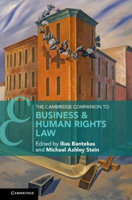 The Cambridge Companion to Business and Human Rights Law