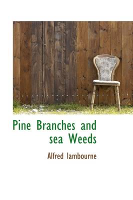 Pine Branches and Sea Weeds