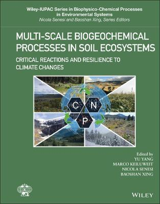 Multi-Scale Biogeochemical Processes in Soil Ecosystems: Critical Reactions and Resilience to Climate Changes