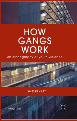 How Gangs Work: An Ethnography of Youth Violence