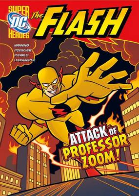 DC Super Heroes: The Flash: Pack A of 6