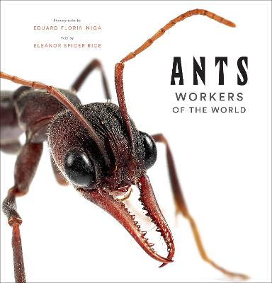 Ants: Workers of the World