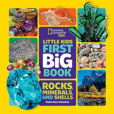 Little Kids First Big Book of Rocks, Minerals and Shells (National Geographic Kids)