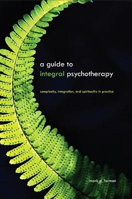 A Guide to Integral Psychotherapy: Complexity, Integration, and Spirituality in Practice