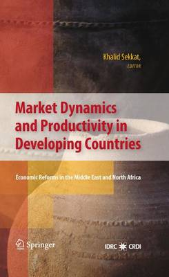 Market Dynamics and Productivity in Developing Countries: Economic Reforms in the Middle East and North Africa