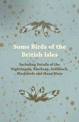Some Birds of the British Isles - Including Details of the Nightingale, Blackcap, Goldfinch, Blackbirds and Many More