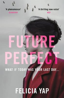 Future Perfect: The Most Exciting High-Concept Novel of the Year