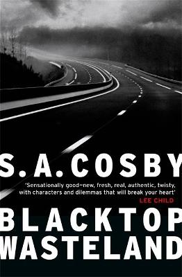 Blacktop Wasteland: the searing crime thriller Lee Child calls 'sensationally good'