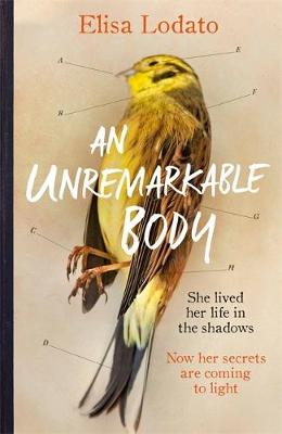 An Unremarkable Body: A stunning literary debut with a twist