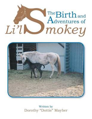 The Birth and Adventures of Lil Smokey
