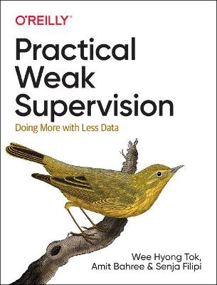 Practical Weak Supervision: Doing More with Less Data