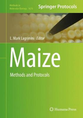 Maize: Methods and Protocols