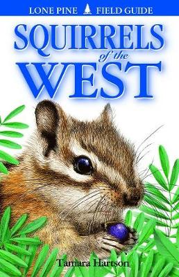 Squirrels of the West