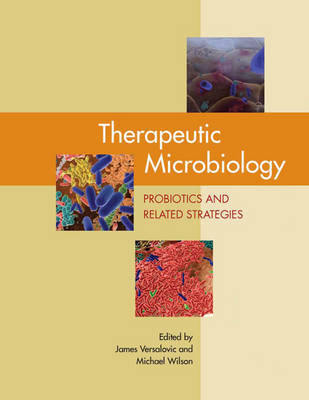 Therapeutic Microbiology: Probiotics and Related Strategies