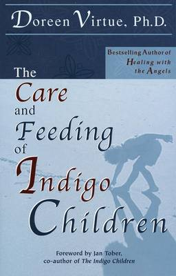 Care & Feeding Of Indigo Children