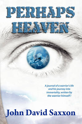 Perhaps Heaven: The Story of a Warrior's Life and His Journey to Immortality, Book I