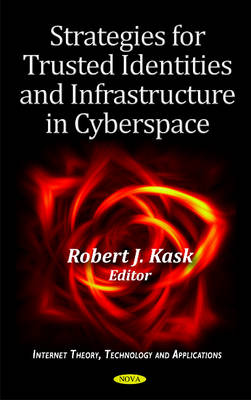 Strategies for Trusted Identities & Infrastructure in Cyberspace