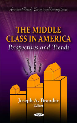 Middle Class in America: Perspectives & Trends