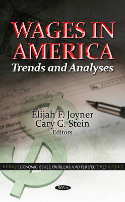 Wages in America: Trends & Analyses