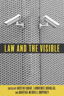 Law and the Visible