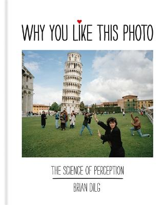 Why You Like This Photo: The science of perception