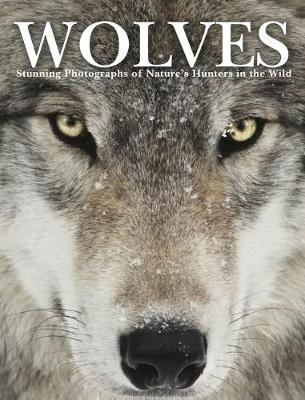 Wolves: Stunning Photographs of Nature's Hunters in the Wild