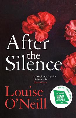 After the Silence: The An Irish Post Crime Novel of the Year