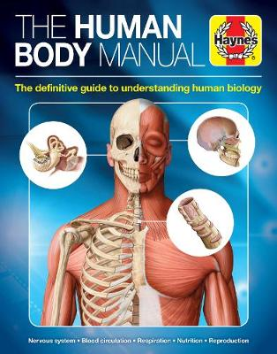 The Human Body: Understanding every physical aspect of the human frame