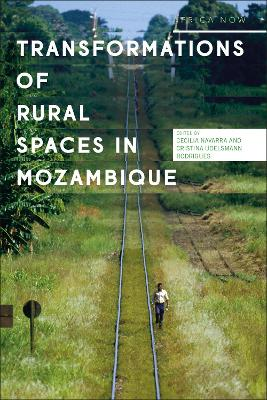 Transformations of the Rural Spaces in Mozambique