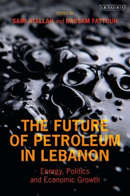 The Future of Petroleum in Lebanon: Energy, Politics and Economic Growth