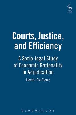 Courts, Justice, and Efficiency: A Socio-Legal Study of Economic Rationality in Adjudication