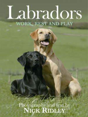 Labradors: Work, Rest and Play