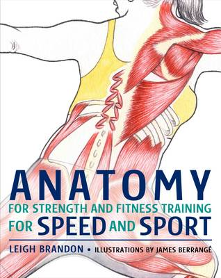 Anatomy for Strength and Fitness Training for Speed and Sport