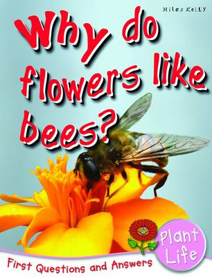 First Q & a - Why Do Flowers Like Bees?