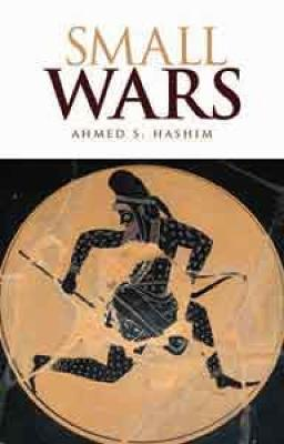 Small Wars: An Interpretive Analysis of Theory and Practice