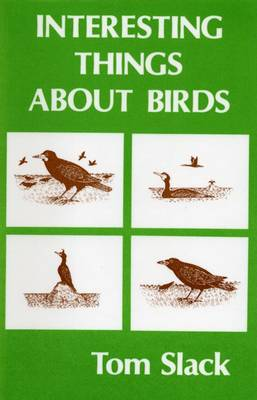 Interesting Things About Birds