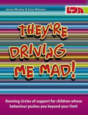 They're Driving Me Mad!: Running Circles of Support for Children Whose Behaviour Pushes You Beyond Your Limit