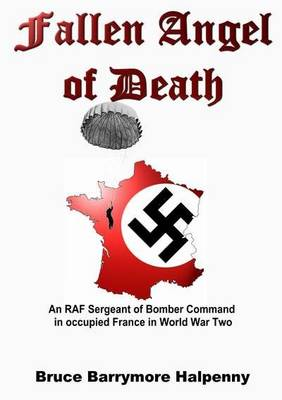 Fallen Angel of Death: An RAF Sergeant of Bomber Command in Occupied France in World War Two
