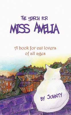The Search for Miss Amelia