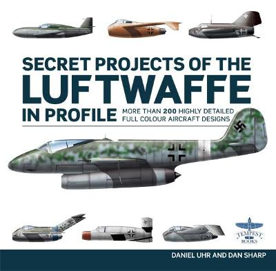 Secret Project of the Luftwaffe in Profile